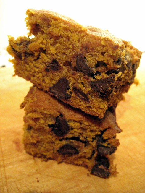Pumpkin Chocolate Chip Bars | Adventures of a Hungry Redhead